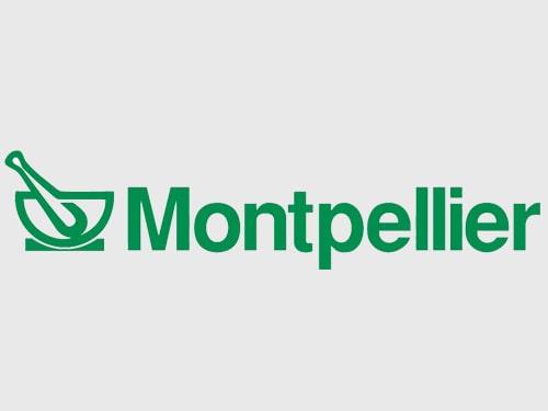 Química Montpellier